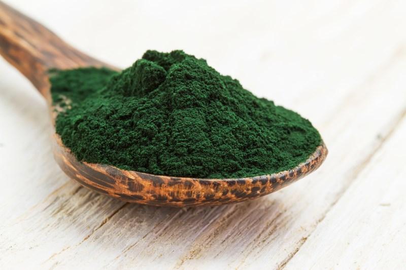 Closeup of an organic spirulina algae powder in a wooden spoon